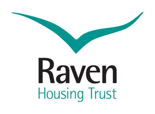 raven_500